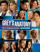 GREY'S ANATOMY - 8ª TEMPORADA
