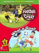 FOOTBALL CRAZY! WHAT A GOAL! - LEVEL 4