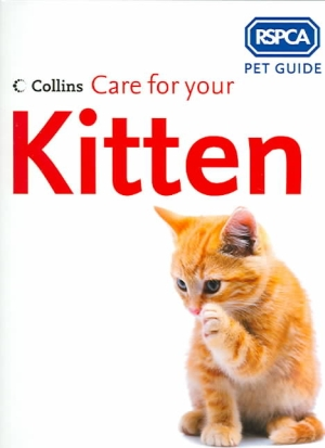 care-for-your-kitten