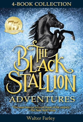 black-stallion-adventures-the