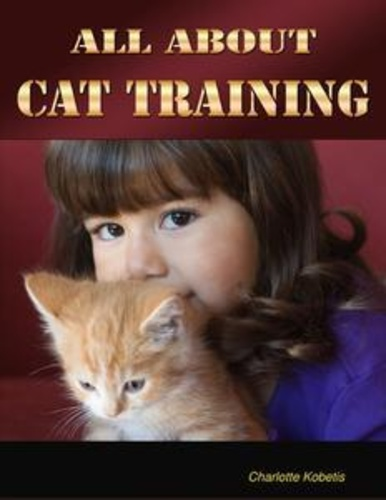all-about-cat-training