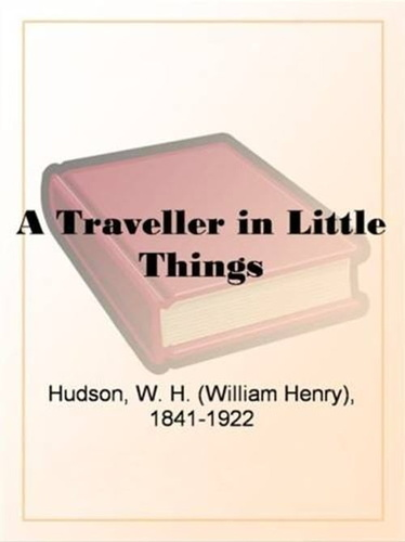 traveller-in-little-things-a