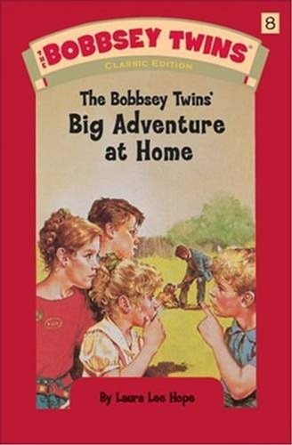bobbsey-twins-at-home-the