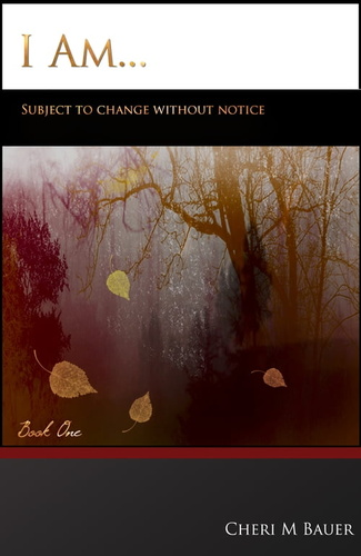 i-am-subject-to-change-without-notice-book