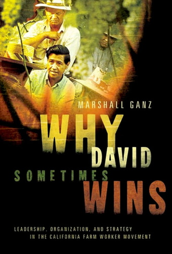 why-david-sometimes-wins