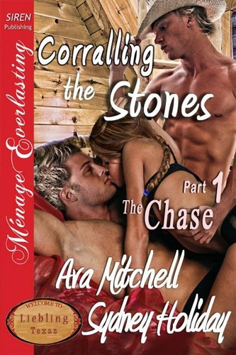 corralling-the-stones-part-1-the-chase