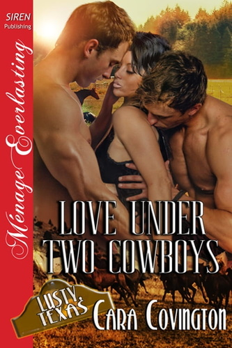 love-under-two-cowboys