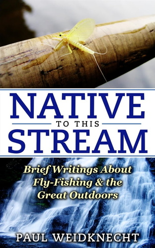 native-to-this-stream-brief-writings-about