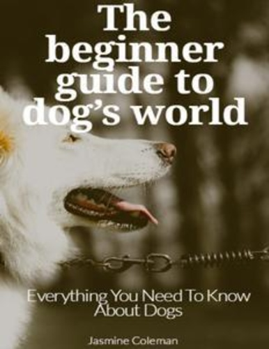 beginner-guide-to-dogs-world-the