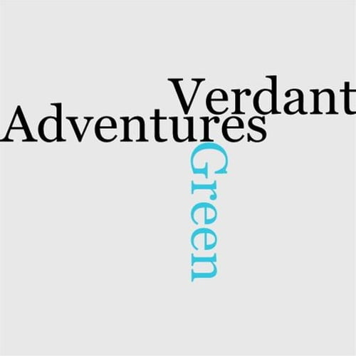 adventures-of-mr-verdant-green-the