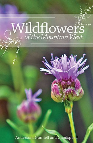 wildflowers-of-the-mountain-west