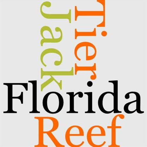 jack-tier-or-the-florida-reef
