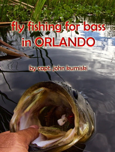 fly-fishing-for-bass-in-orlando
