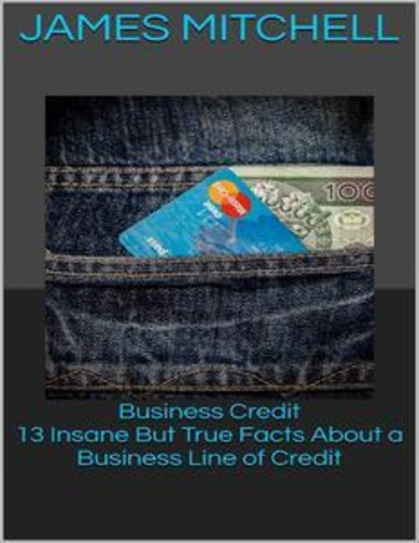 business-credit-13-insane-but-true-facts-about