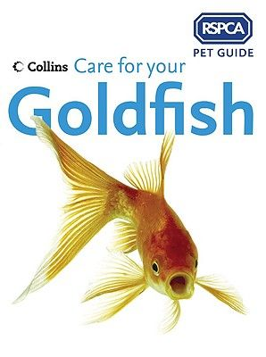 care-for-your-goldfish