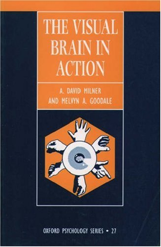 visual-brain-in-action-the