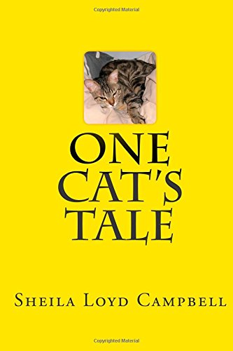 one cats tale