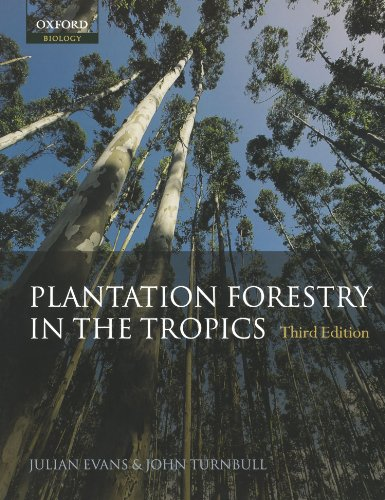 plantation-forestry-in-the-tropics