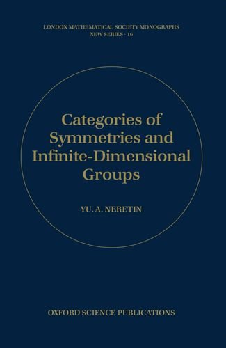 categories-of-symmetries-infinite-dimensional