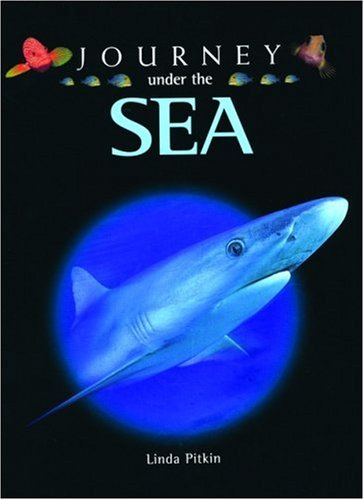 journey-under-the-sea