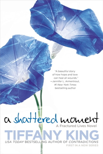 shattered moment, a