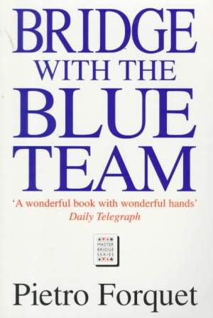 bridge-with-the-blue-team