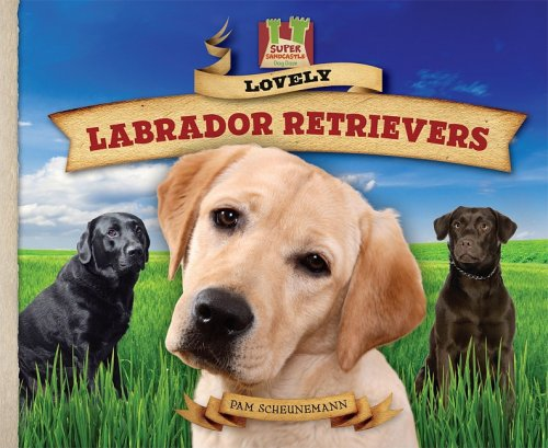 lovely labrador retrievers