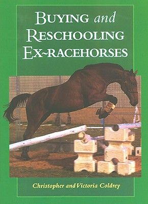 buying-reschooling-ex-racehorses